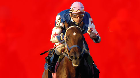 Live Horse Racing Hollywood Casino At Penn National Race Course